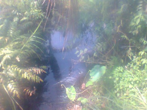 Anak Sungai tempat aliran limbah yang sudah kritis