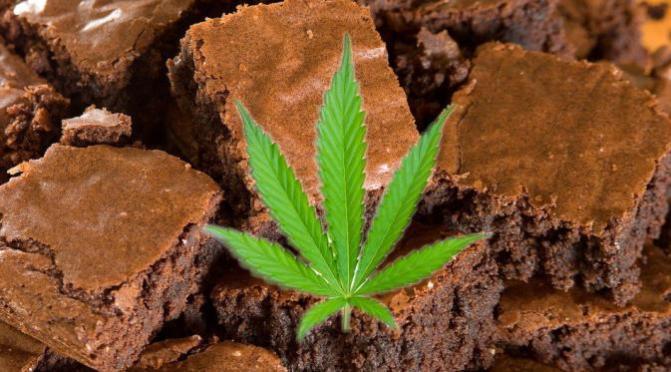 SEPOTONG BROWNIES BERISI GANJA ( PIECE OF BROWNIES containing marijuana )